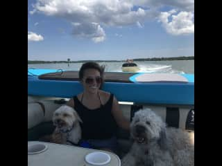 We love our family to bring their dogs to visit us. George's niece with her two cute dogs.
