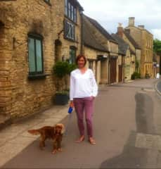 Dog walking in the Cotswolds