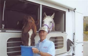Horses, Horses I love Horses!