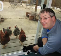 Derek with Pepper the cat and four cook chickens in Bellingham, 2019