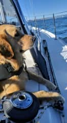 The best sailing crew!