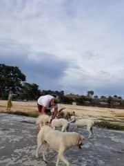 Feeding the Bali beach dogs w/ my sister.