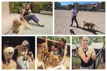 Dogsitting Teo and Bruna + Volunteering in Tikiri Trust