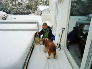 Pat with Ruby and Puppy (Welsh Springer Spaniels) in Maryland, 2014