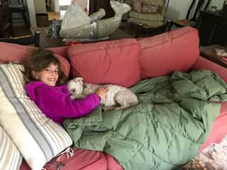 Dog-sitting. Kalypso snuggling with Oliver.