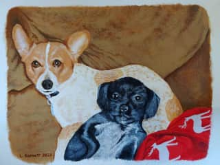Painting I did of friend's pups.