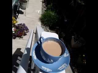 A lil morning latte in the garden I'm taking care of on a sit in beautiful Soquel, CA spring 2021.