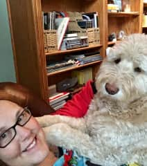 Winnie, our Goldendoodle, is my 80 lb lap dog😁😍
