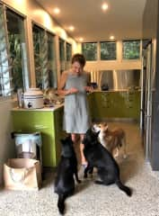 At home with two Kelpies - Pepper and Ellie - and Xena, the Dingo