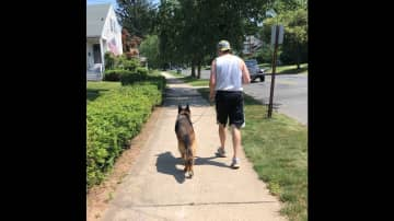 Connor walking/running with my beloved dog Ace! RIP