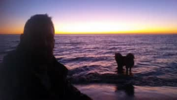 Sunset walks are the best thing about pet-sitting by the beach
