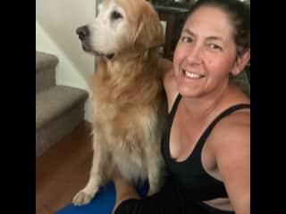 Dogs love yoga too