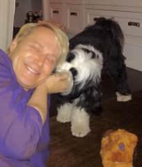 I enjoyed taking care of this family's lovely dog, Georgie.