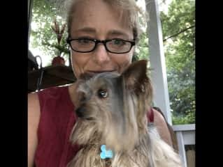 Dogsitting Kingsley, Charlotte