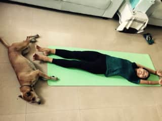 Dog yoga. This is a street dog in Thailand we looked after. She was so sweet. And loved the yoga sessions ;)
