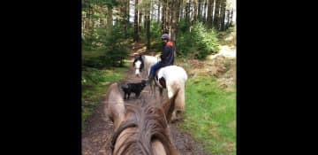 More exploring our local countryside on horse back, with Max leading the way