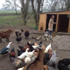 Entrusted with a mini-farm