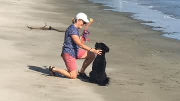 Sue and Pixie playing fetch at the beach (housesit in Toogoom, Australia)