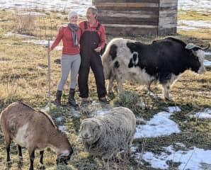 Christmas on the ranch. (Washington, USA)