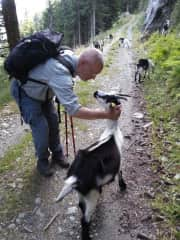 Bernd with his friend the goat ;-)