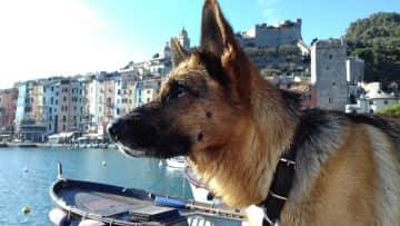 Lily visiting Portovenere