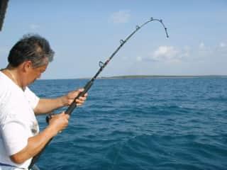 25 minutes for this Spanish Mackerel
