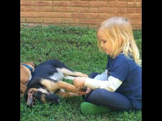 My youngest has zero fear of dogs, no matter their size. She wants to be friends with all of them, and they oblige.