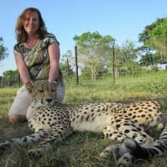Big Cat Sanctuary, South Africa