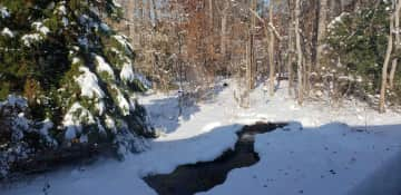 View of the backyard during the winter.