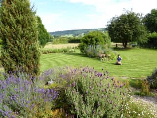 A beautiful garden sit - watering, weeding and mowing lawns