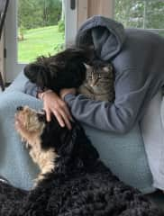 cuddles with Trip and my berniedoodle Kailo