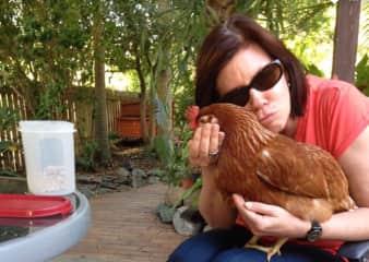 Chicken whispering!