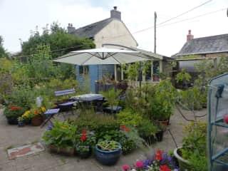 Lower back garden