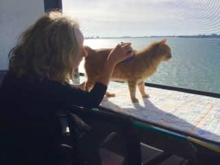 Bridget and Noodle, Sarasota Bay, FL