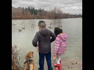 Taking Kaibi to the pond, kaibi love to be surrounded by different animals and kids