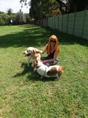With Woody, the retriever and Sam, the basset