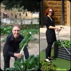 Niomi maintaining various gardens