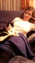 Cat sitting :)
