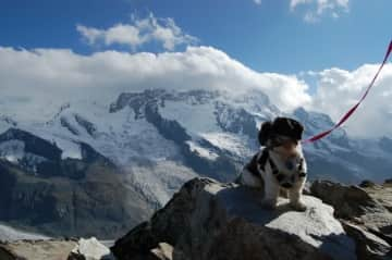 Sydney hiking in Switzerland with mom and dad!