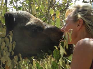 Dusti makes friends with a camel in northern Kenya.