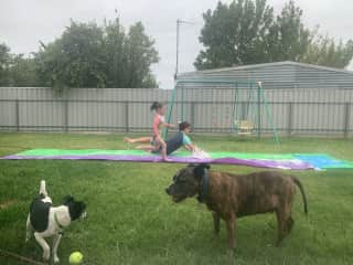 My kids and fur babies out the back on a hot day