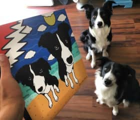 This is a Pet Portrait I created as a thank you for the owner for letting me into their home and caring for their collies Kai and Lonnie