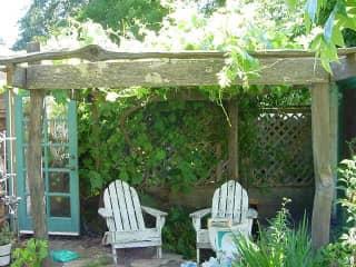Emmy Lou Gardens, Santa Rosa, CA.  near greenhouse and fruit trees