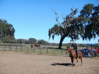 Mariia loves horses and used to be professional horseback rider.