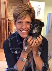 Diane Loves, loves, loves little chihuahuas!