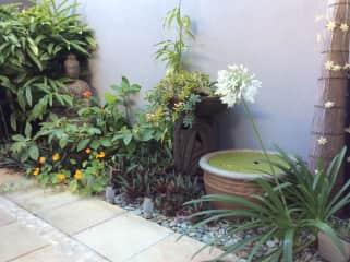 Our little courtyard garden!