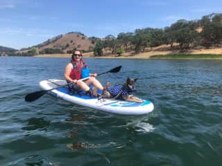 Taught our very calm pup to sit on a kayak.