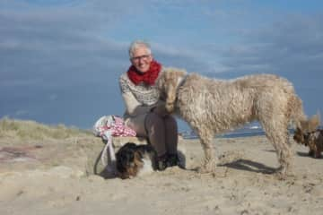 With the sweet dogs at Studland Bay in United Kingdom 2018/2019
