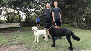 Sasa and Ben walking dogs