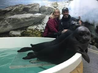 The seal circus in Siberia, Russia